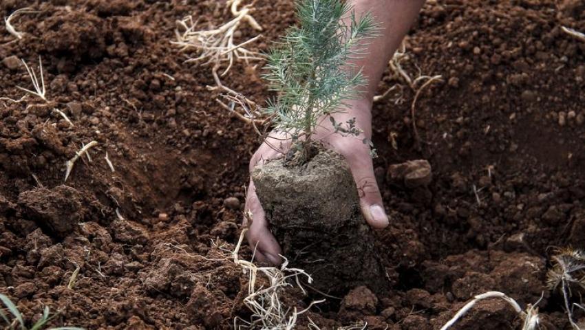 """""""11 Milyon Ağaç; Bugün Fidan, Yarın Nefes"""" Programı"""