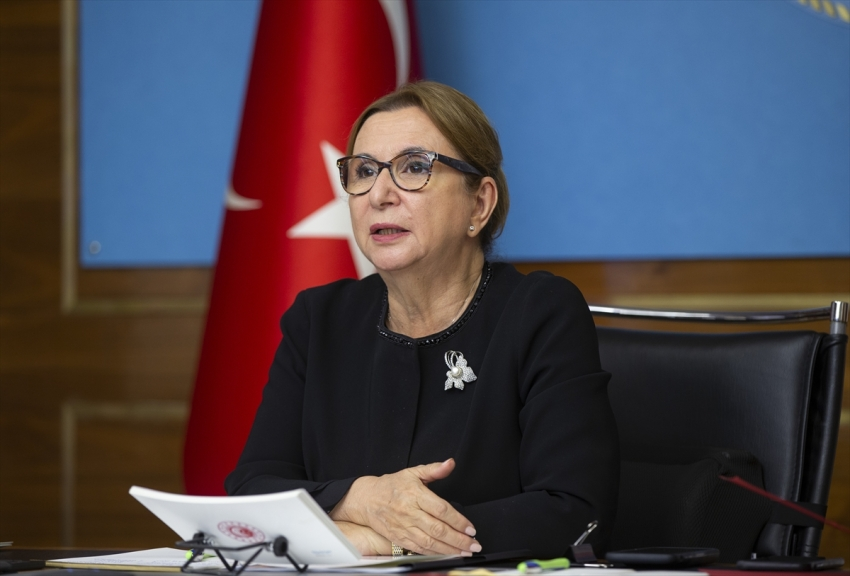"""""""2020'de ihracatçımıza 1 milyar 779 milyon lira destek sağladık"""""""