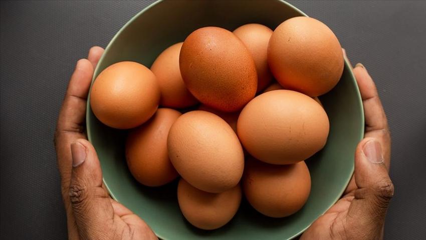 Yumurta fiyatlarının artmasının sebebi…