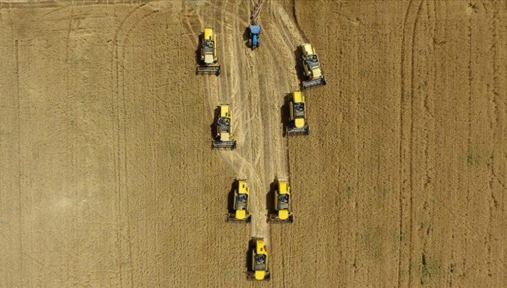 Ziraat Bankası'nın tarım kredilerinde artış