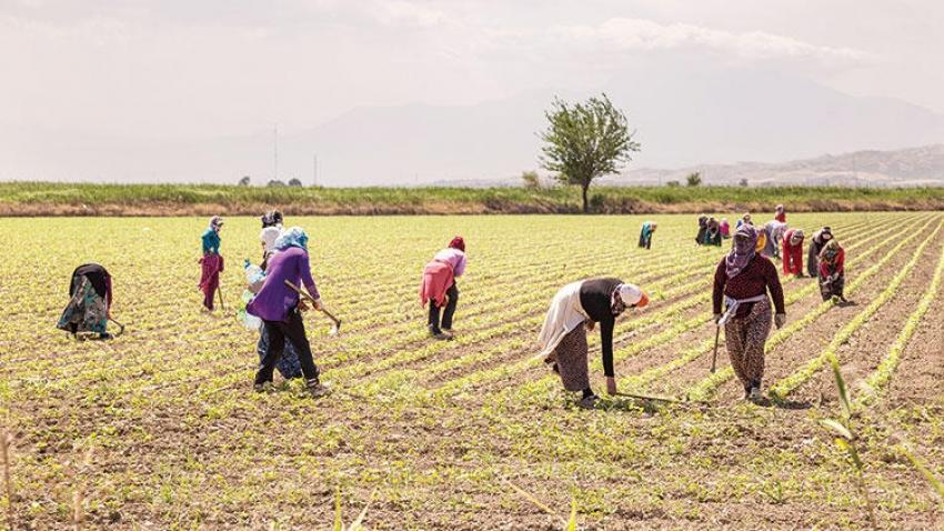 Bayram öncesi çiftçilere avans müjdesi