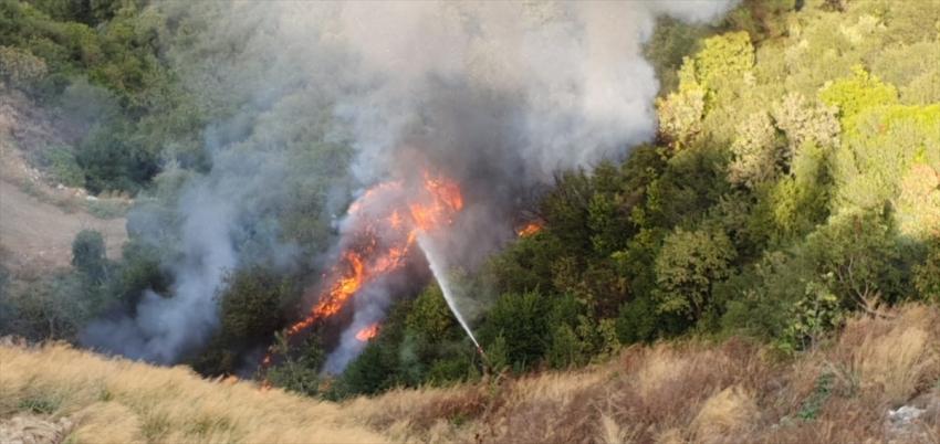 Bursa Gemlik'te orman yangını çıktı!