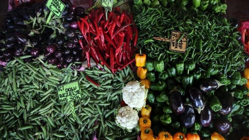 Doğu Akdeniz'den yaş sebze meyve ihracatına büyük katkı