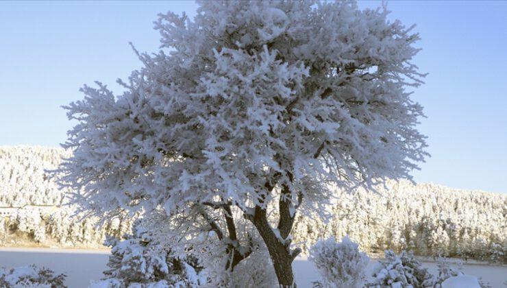 Eksi 32 dereceyle Türkiye'nin en soğuk ili oldu