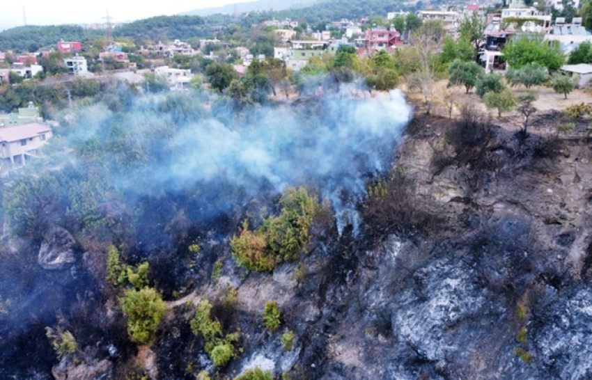 Hatay'da dün başlayan orman yangınına müdahale sürüyor