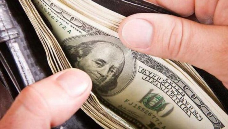 Hazineden dolar cinsi kira sertifikası ihracı