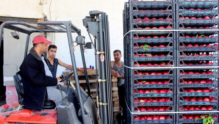 İnegöl'den Rusya ve Irak'a şeftali ihracatı