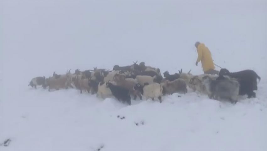 Kar, çobanlara zor anlar yaşattı