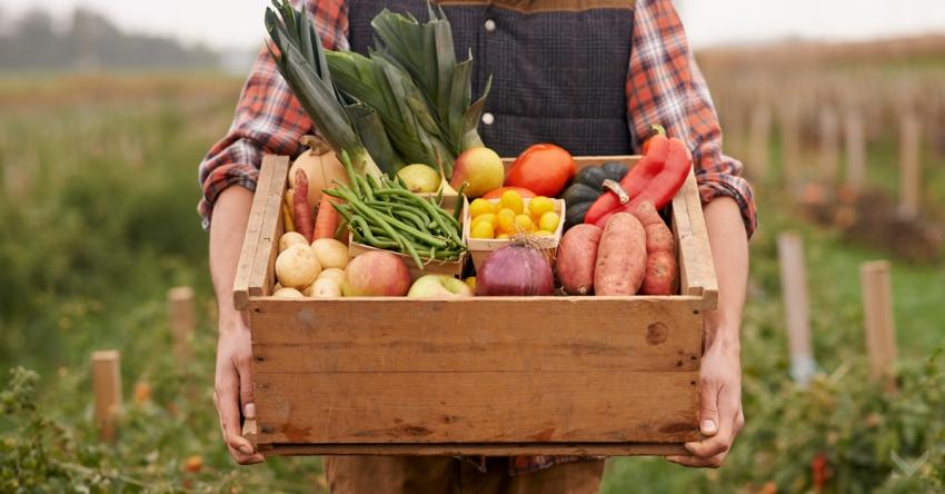 Koronavirüs gıda ihracatını vurdu!