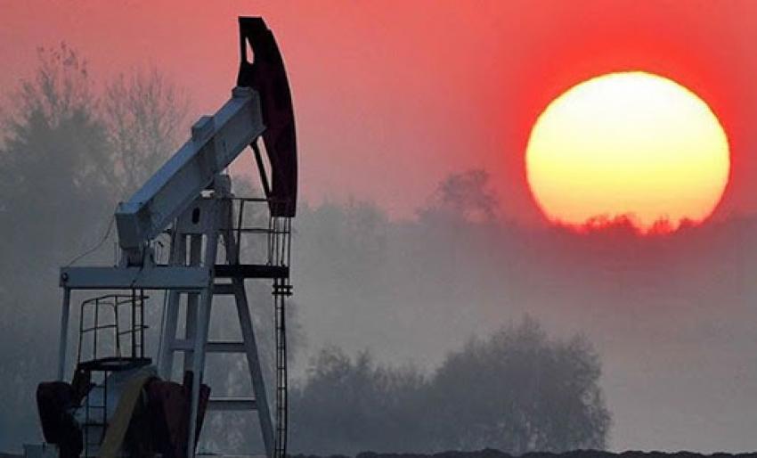 Küresel petrol talebi yüzde 4,9 azalabilir