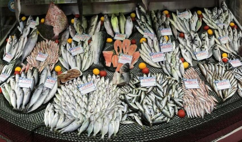 Su ürünleri avcılığının düzenlenmesinde değişiklik