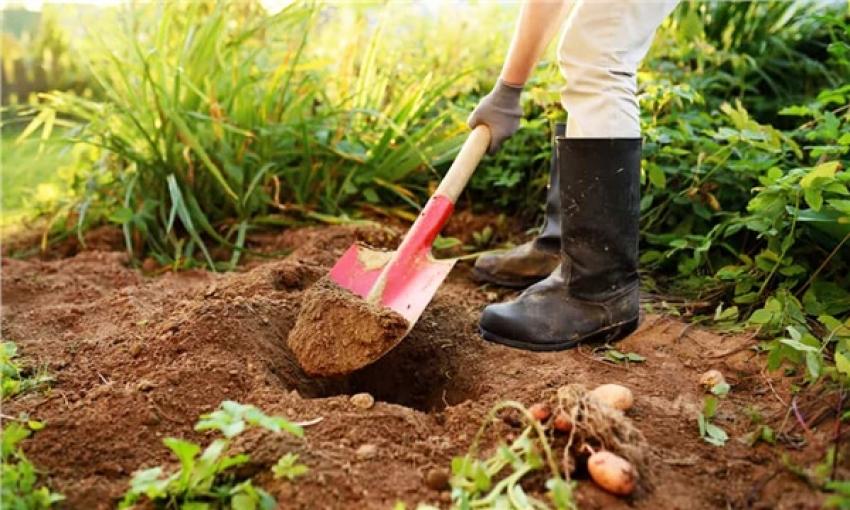 Tarım arazilerini hobi bahçesi için satanlara kötü haber