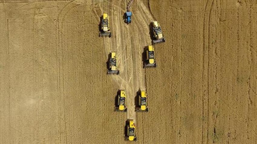 Tarımsal desteklerde yüzde 37 artış