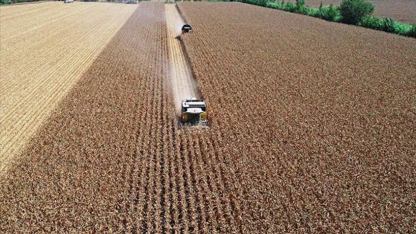 Tarımsal desteklere 'girdi maliyeti' ayarı