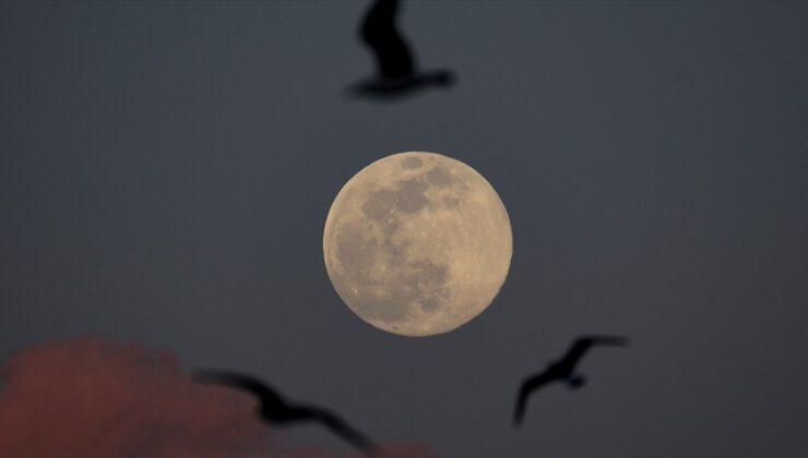 NASA Ay hakkında yeni bir keşif açıklayacak