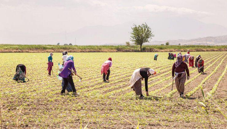 Petlas'dan çiftçilere destek