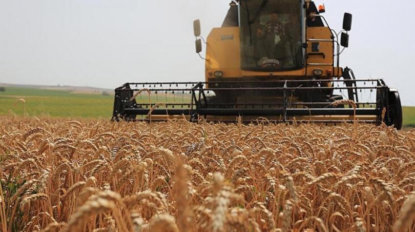 """Rusya'dan """"tahıl OPEC'i kurulsun"""" önerisi"""