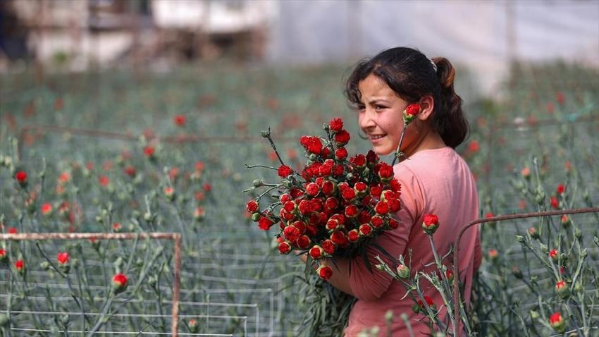 Türk çiçeği dünya turunda!